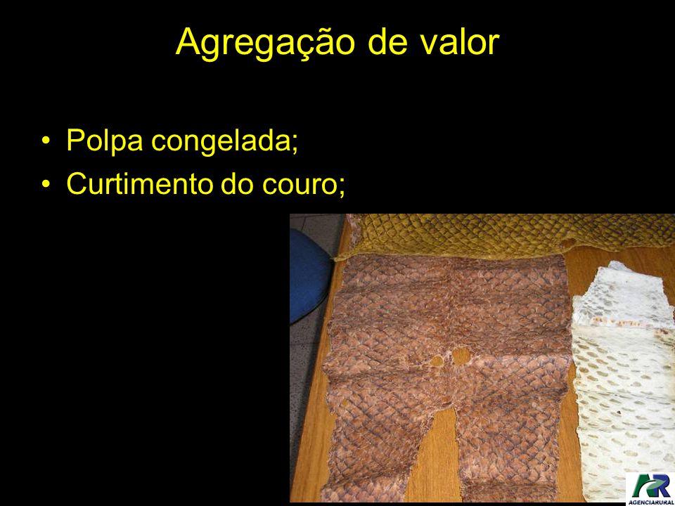 Agregação de valor Polpa congelada; Curtimento do couro;