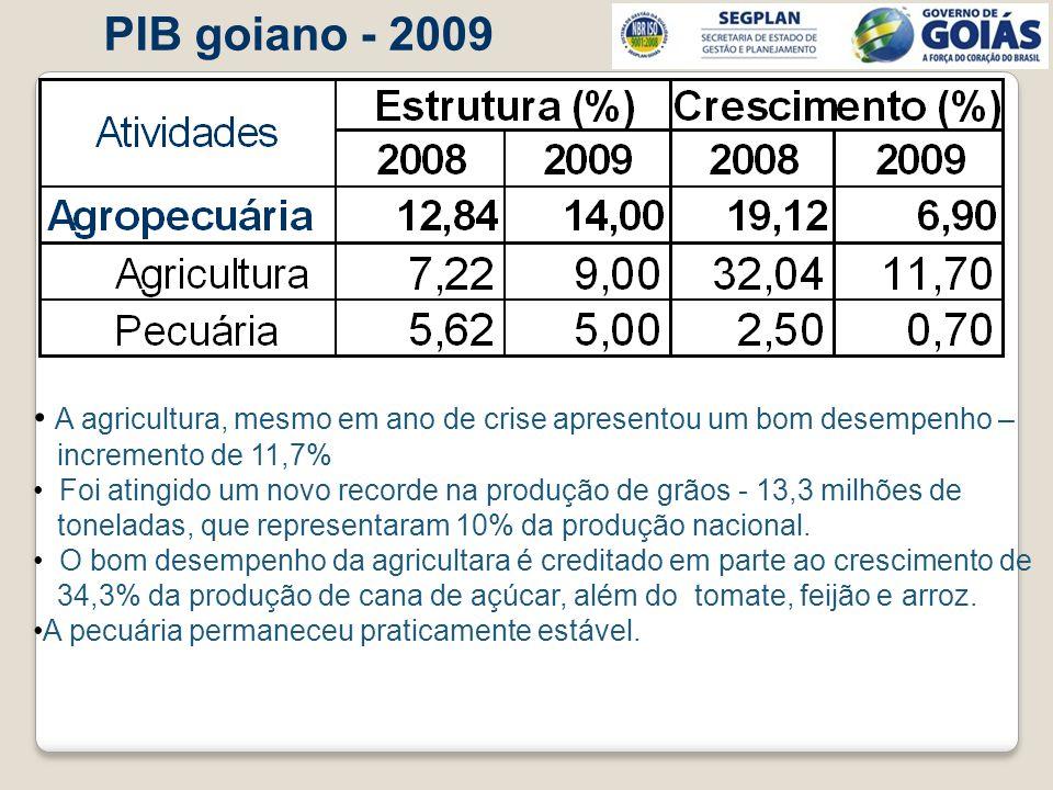 PIB goiano - 2009 A agricultura, mesmo em ano de crise apresentou um bom desempenho – incremento de 11,7%
