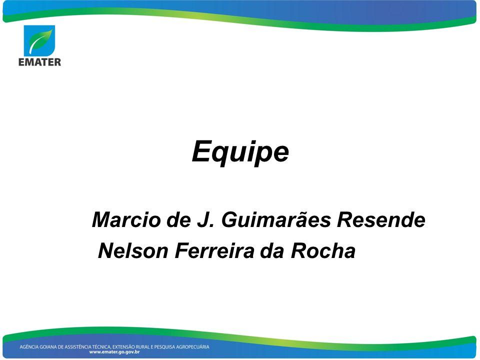 Marcio de J. Guimarães Resende Nelson Ferreira da Rocha
