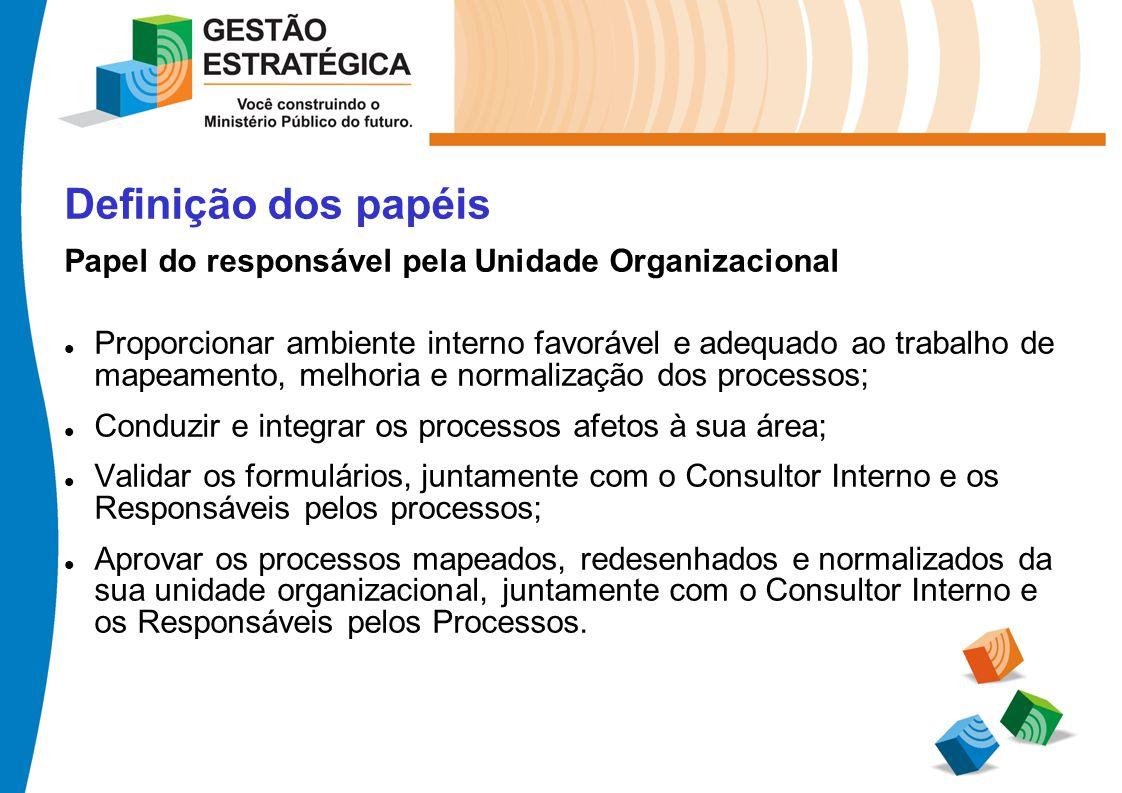 Definição dos papéis Papel do responsável pela Unidade Organizacional