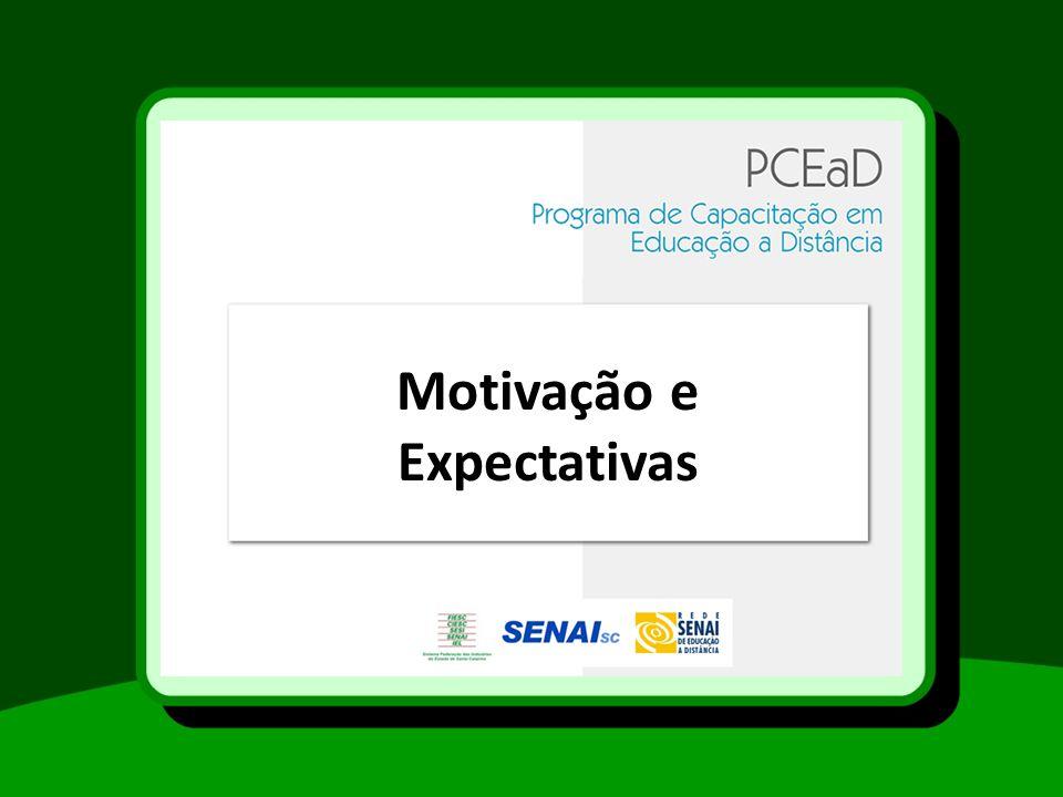 Motivação e Expectativas