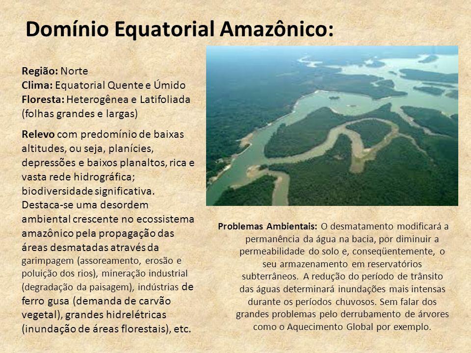 Domínio Equatorial Amazônico: