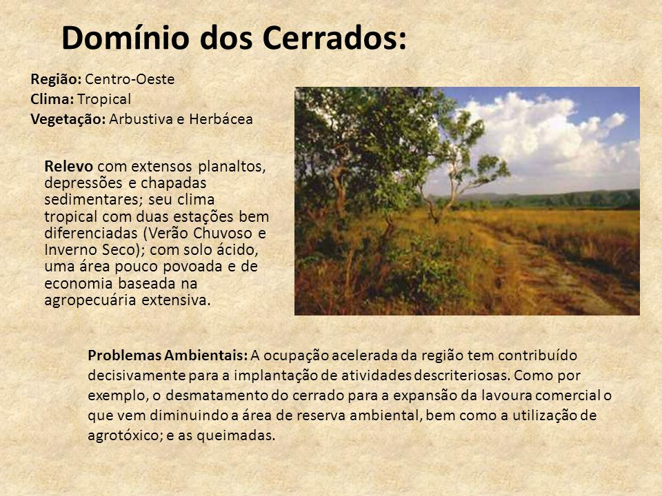 Domínio dos Cerrados: Região: Centro-Oeste Clima: Tropical Vegetação: Arbustiva e Herbácea.