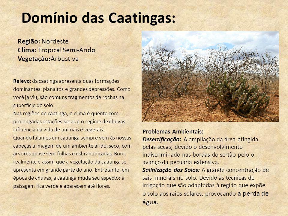 Domínio das Caatingas: