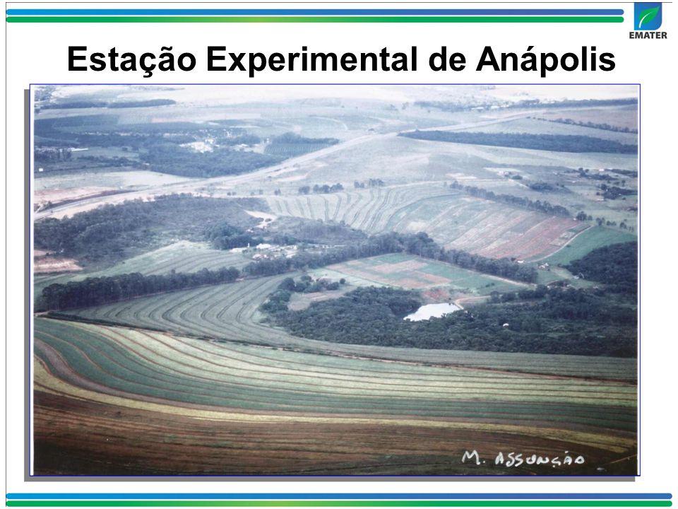 Estação Experimental de Anápolis