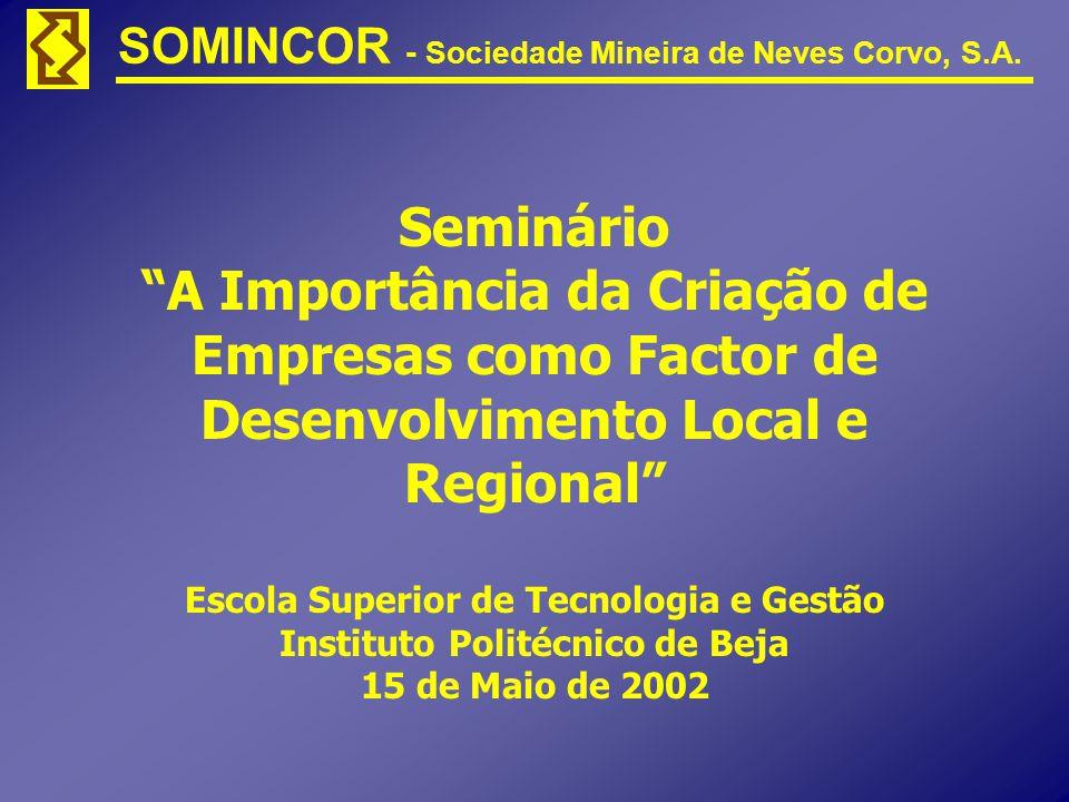 Seminário A Importância da Criação de Empresas como Factor de Desenvolvimento Local e Regional Escola Superior de Tecnologia e Gestão Instituto Politécnico de Beja 15 de Maio de 2002