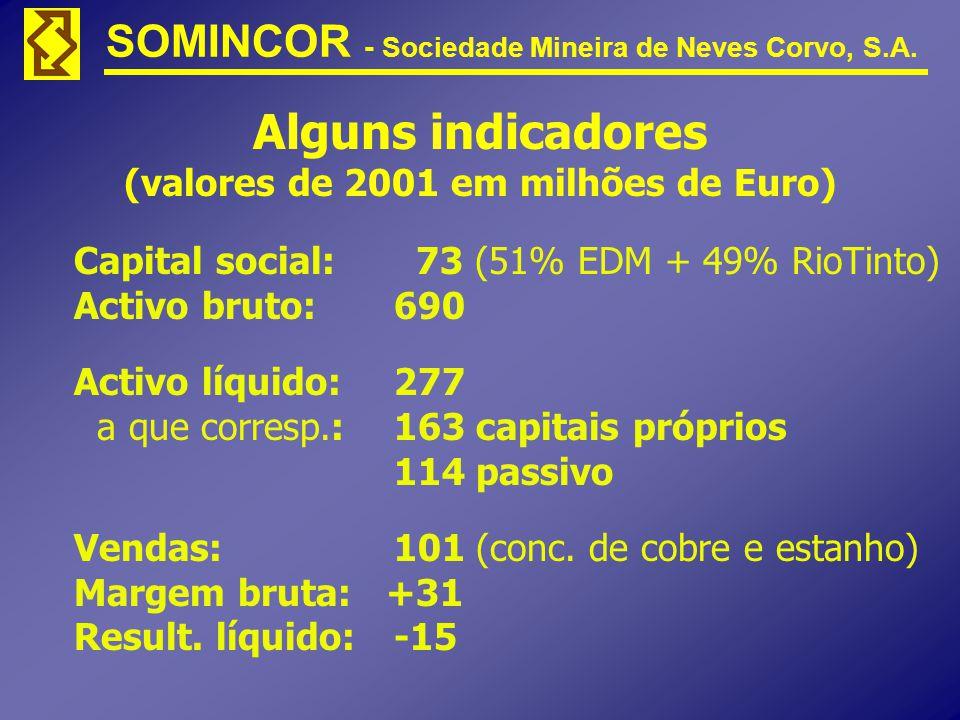 Alguns indicadores (valores de 2001 em milhões de Euro)