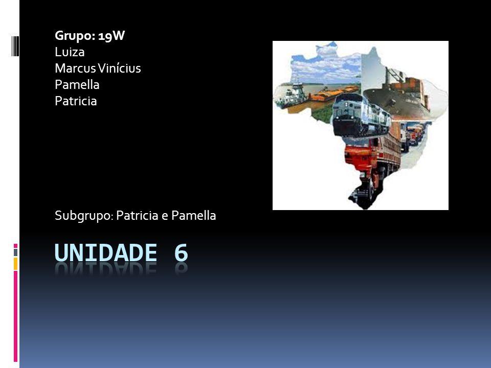 Unidade 6 Grupo: 19W Luiza Marcus Vinícius Pamella Patricia