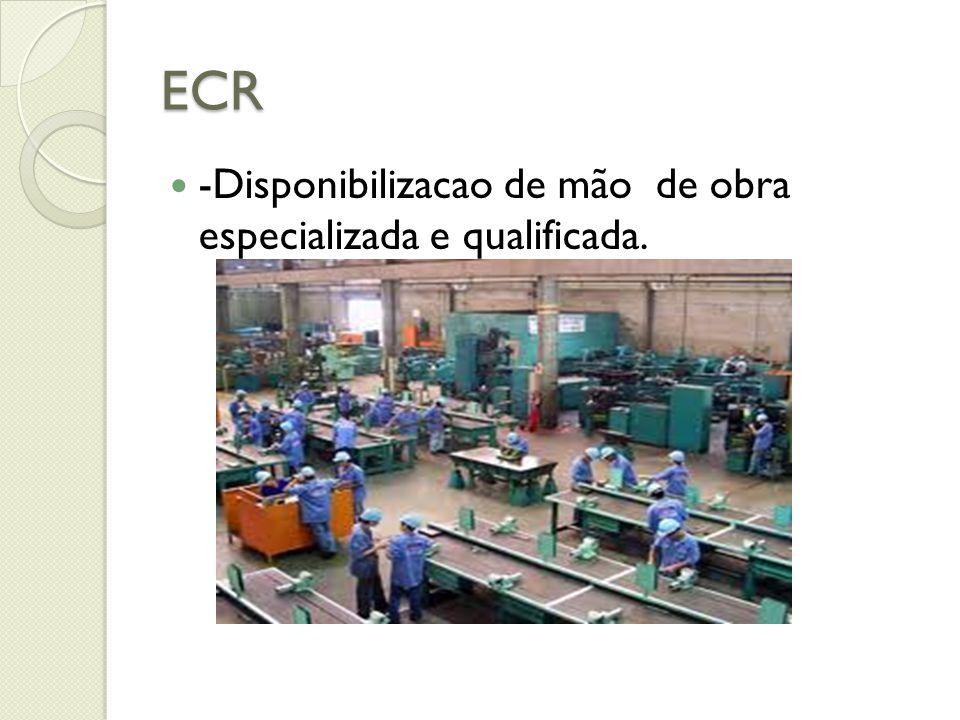 ECR -Disponibilizacao de mão de obra especializada e qualificada.