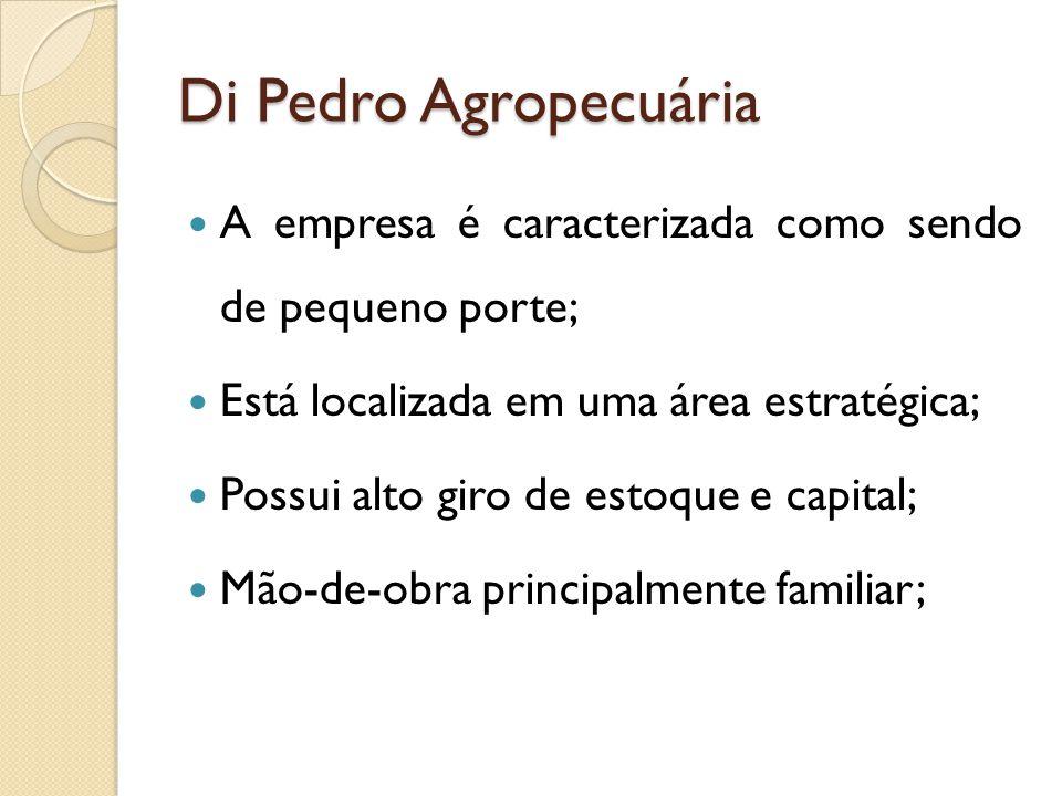 Di Pedro Agropecuária A empresa é caracterizada como sendo de pequeno porte; Está localizada em uma área estratégica;