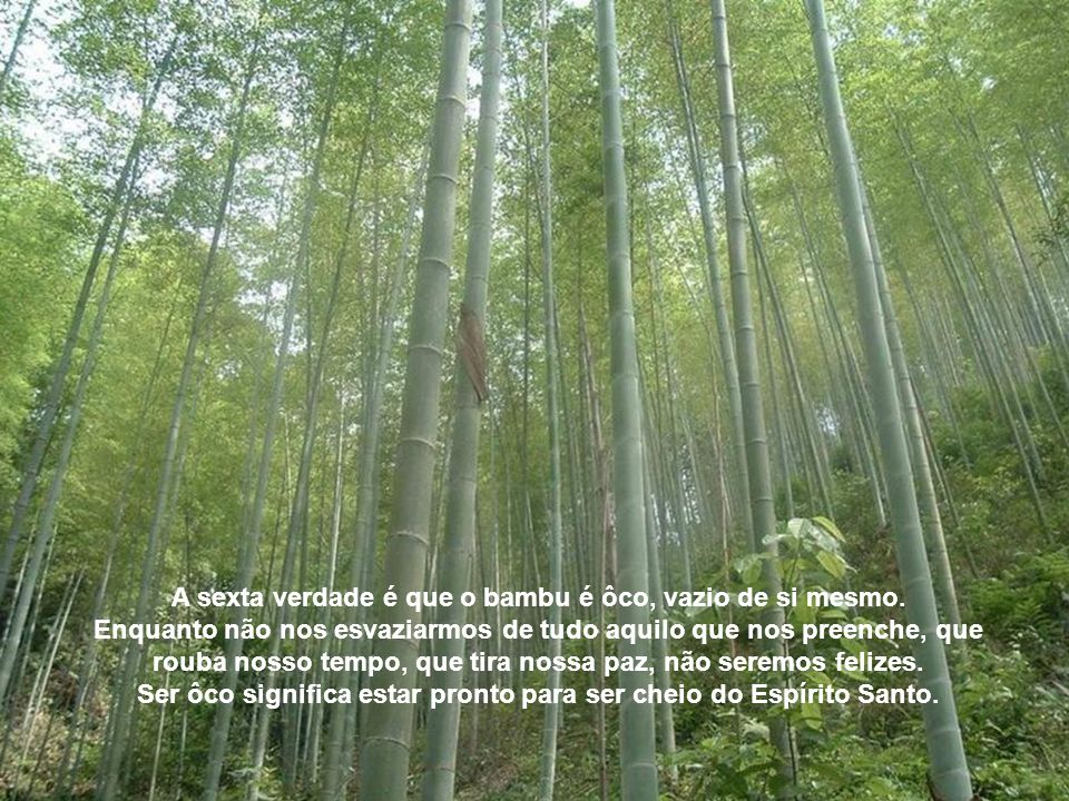 A sexta verdade é que o bambu é ôco, vazio de si mesmo