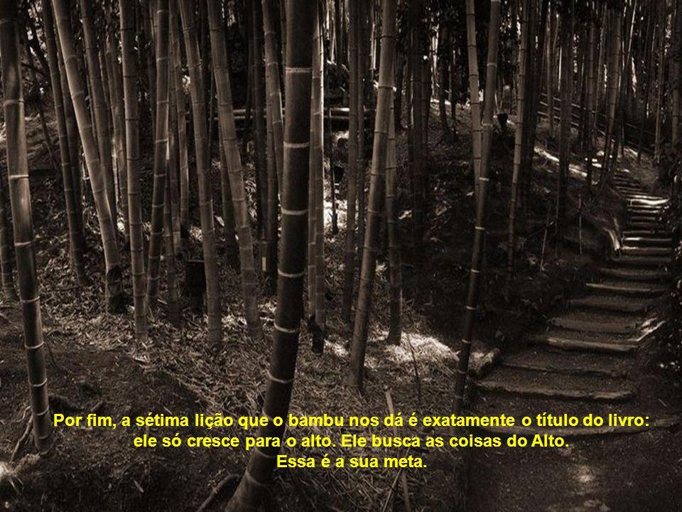 Por fim, a sétima lição que o bambu nos dá é exatamente o título do livro: ele só cresce para o alto.