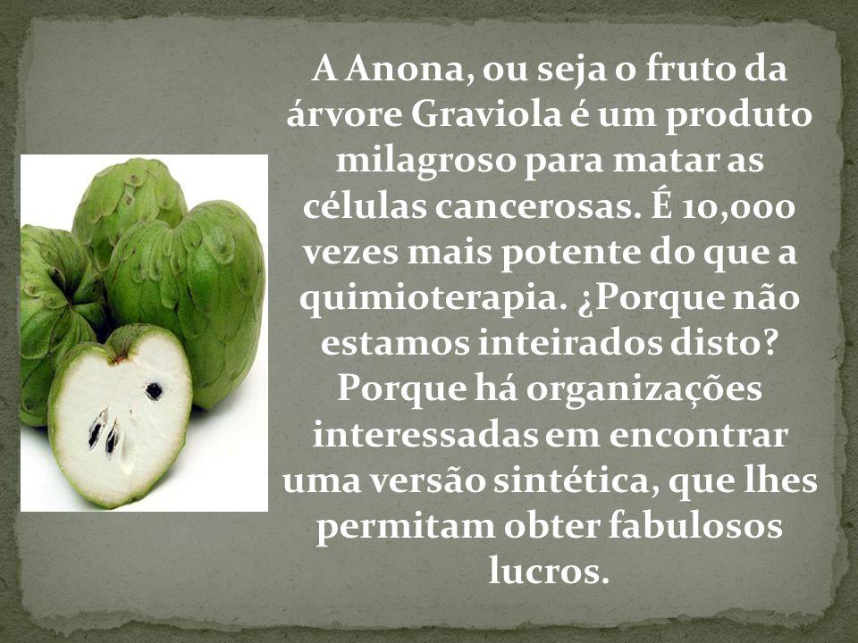 A Anona, ou seja o fruto da árvore Graviola é um produto milagroso para matar as células cancerosas. É 10,000 vezes mais potente do que a quimioterapia. ¿Porque não estamos inteirados disto.