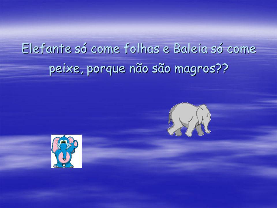 Elefante só come folhas e Baleia só come peixe, porque não são magros