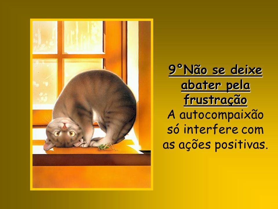 9°Não se deixe abater pela frustração A autocompaixão só interfere com as ações positivas.