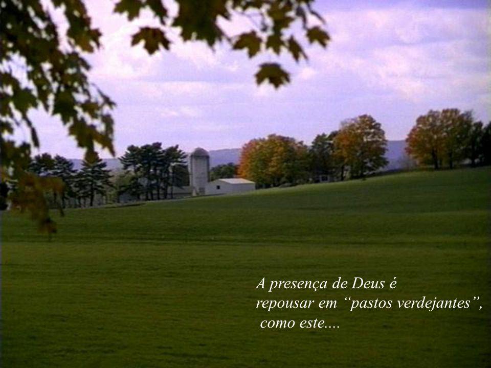 A presença de Deus é repousar em pastos verdejantes , como este....