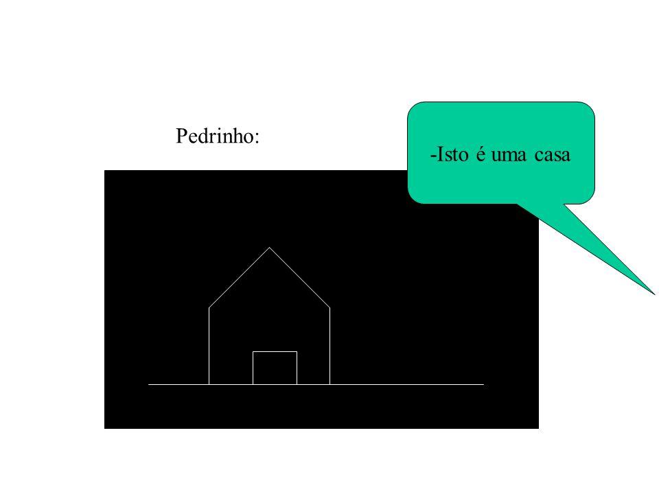 -Isto é uma casa Pedrinho: