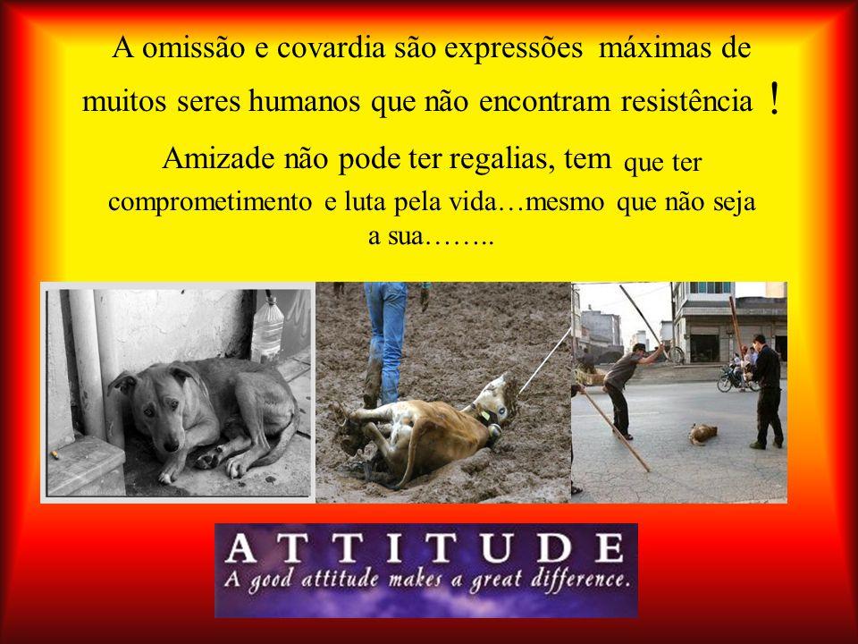 A omissão e covardia são expressões máximas de muitos seres humanos que não encontram resistência .