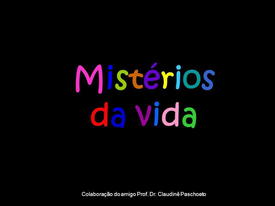Mistérios da vida Colaboração do amigo Prof. Dr. Claudinê Paschoeto
