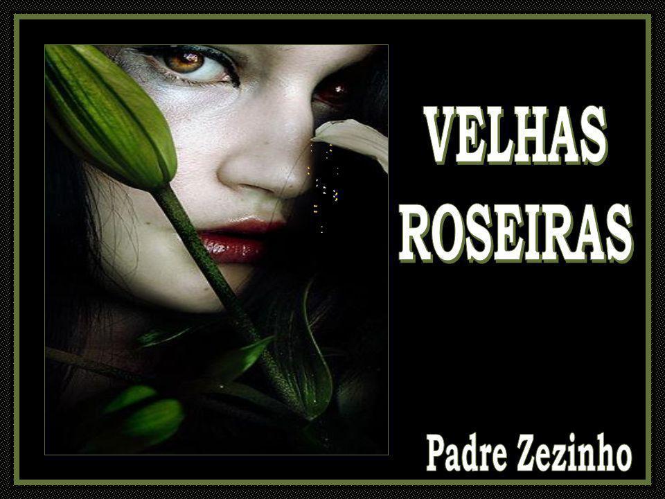 VELHAS ROSEIRAS Padre Zezinho