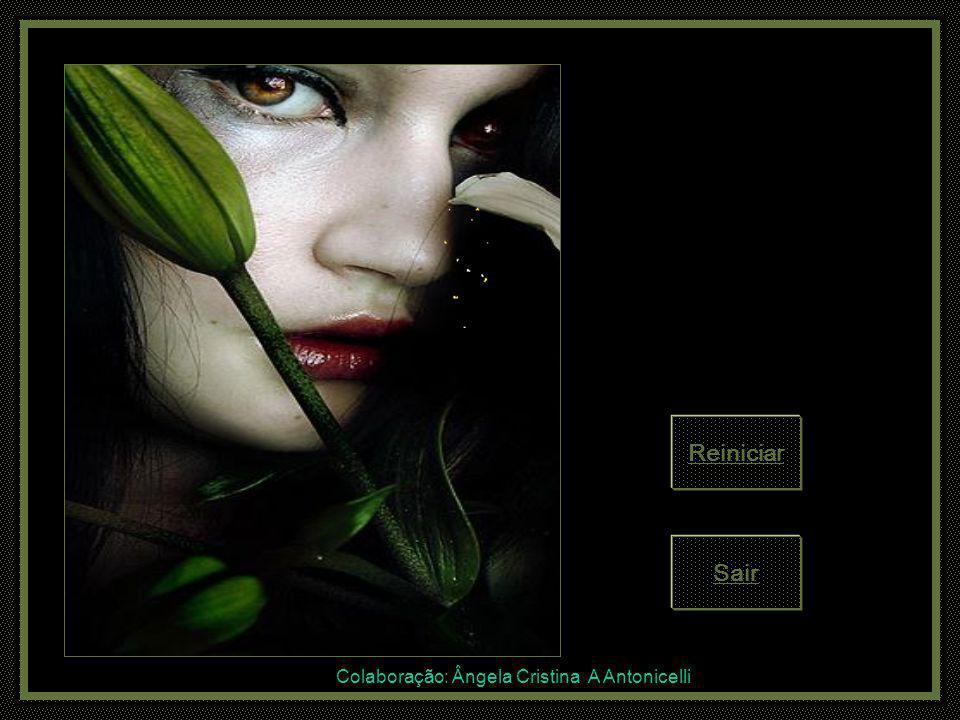 Colaboração: Ângela Cristina A Antonicelli