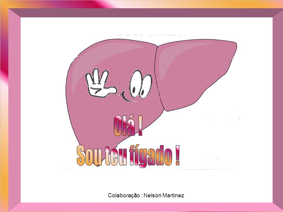 Olá ! Sou teu fígado ! Colaboração : Nelson Martinez