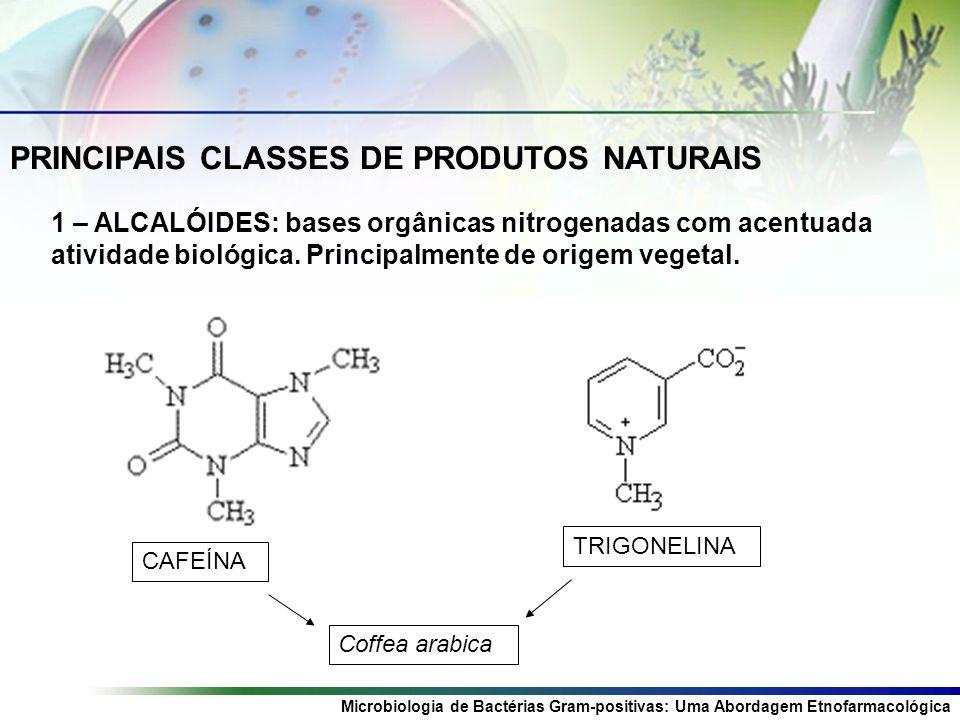 PRINCIPAIS CLASSES DE PRODUTOS NATURAIS