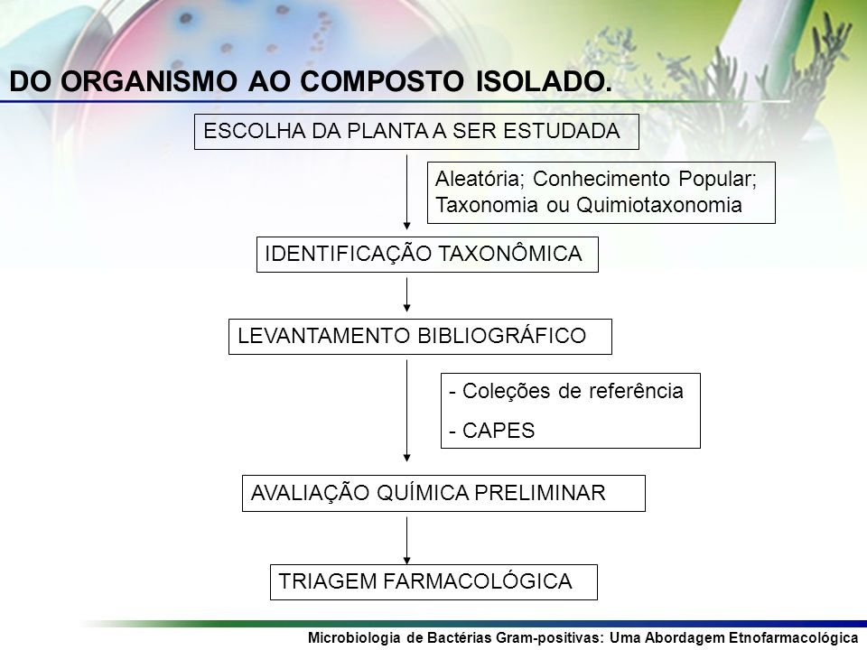DO ORGANISMO AO COMPOSTO ISOLADO.