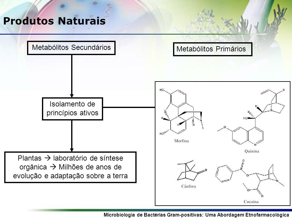 Produtos Naturais Metabólitos Secundários Metabólitos Primários
