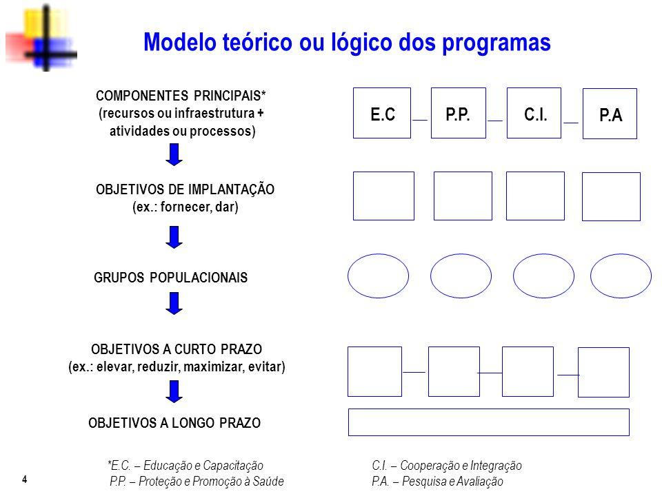 Modelo teórico ou lógico dos programas