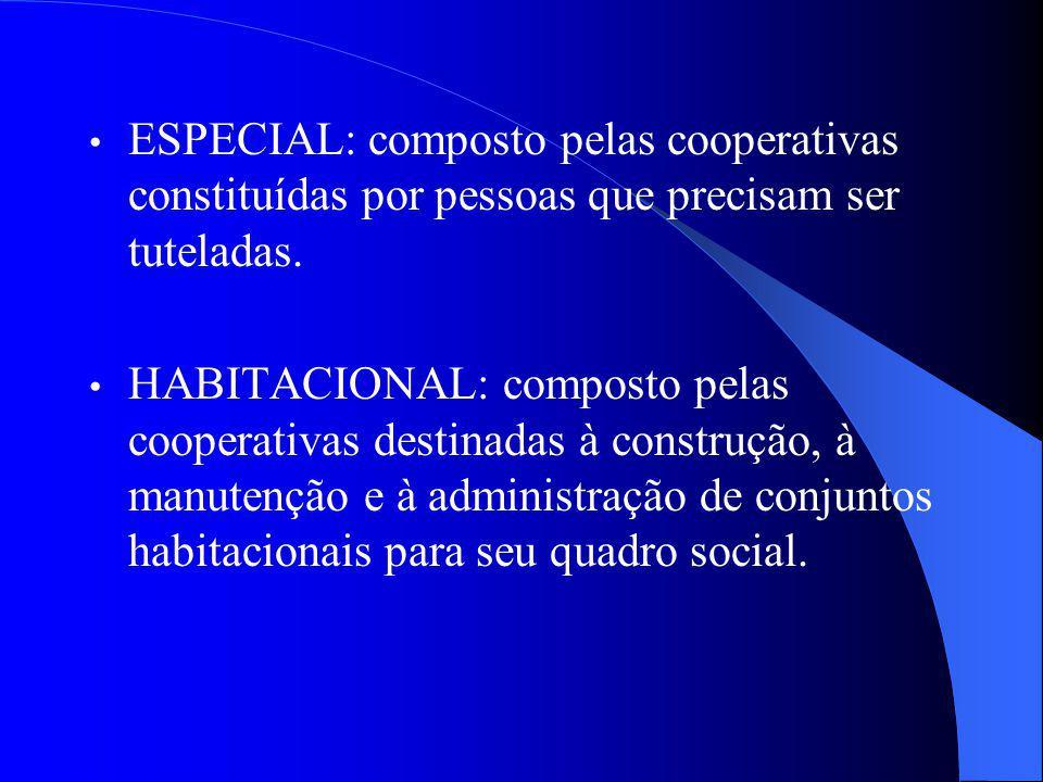 ESPECIAL: composto pelas cooperativas constituídas por pessoas que precisam ser tuteladas.