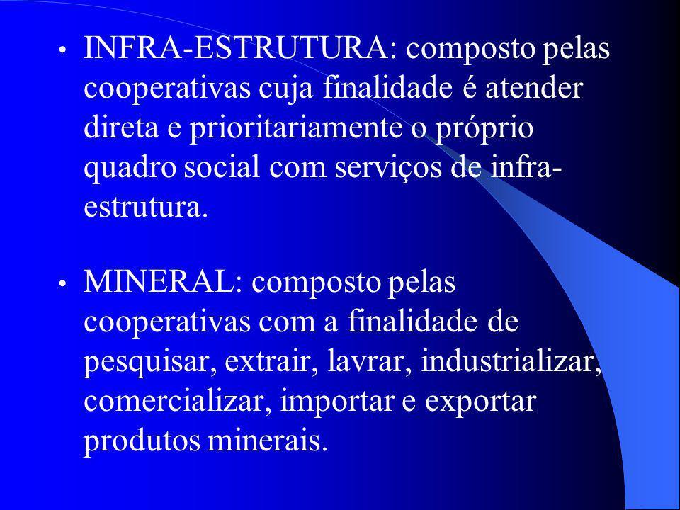 INFRA-ESTRUTURA: composto pelas cooperativas cuja finalidade é atender direta e prioritariamente o próprio quadro social com serviços de infra-estrutura.