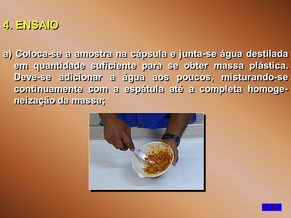 4. ENSAIO