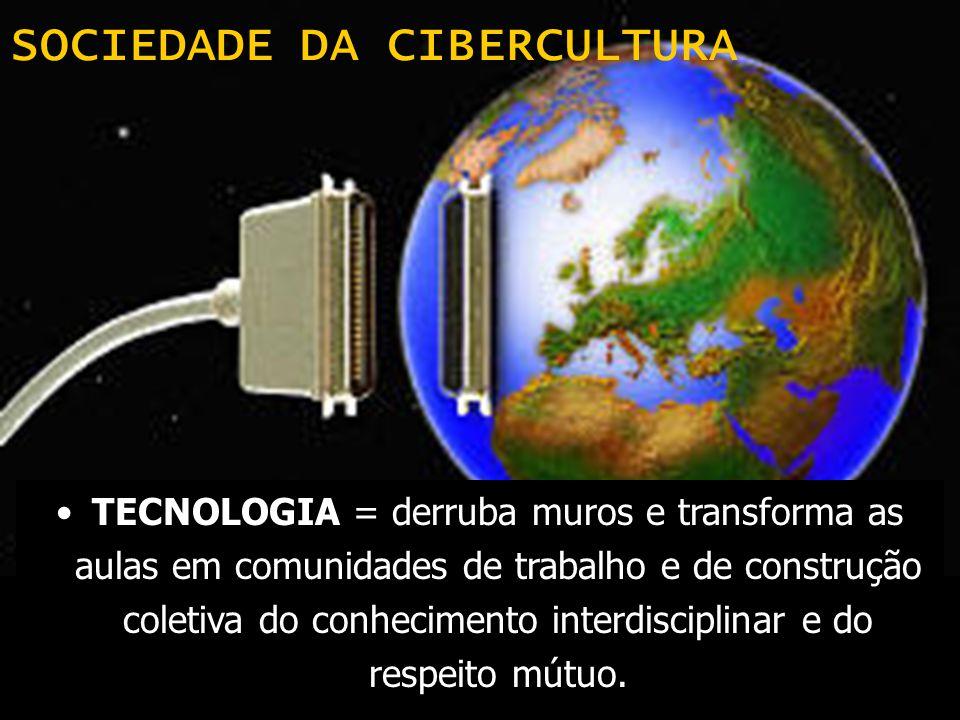 SOCIEDADE DA CIBERCULTURA