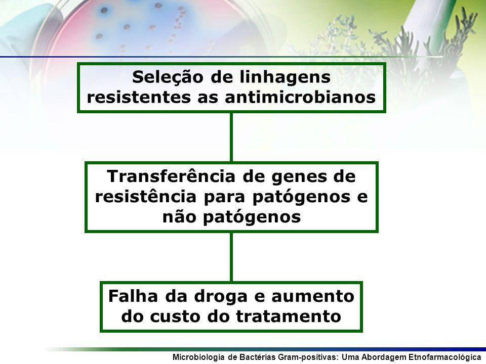 Seleção de linhagens resistentes as antimicrobianos