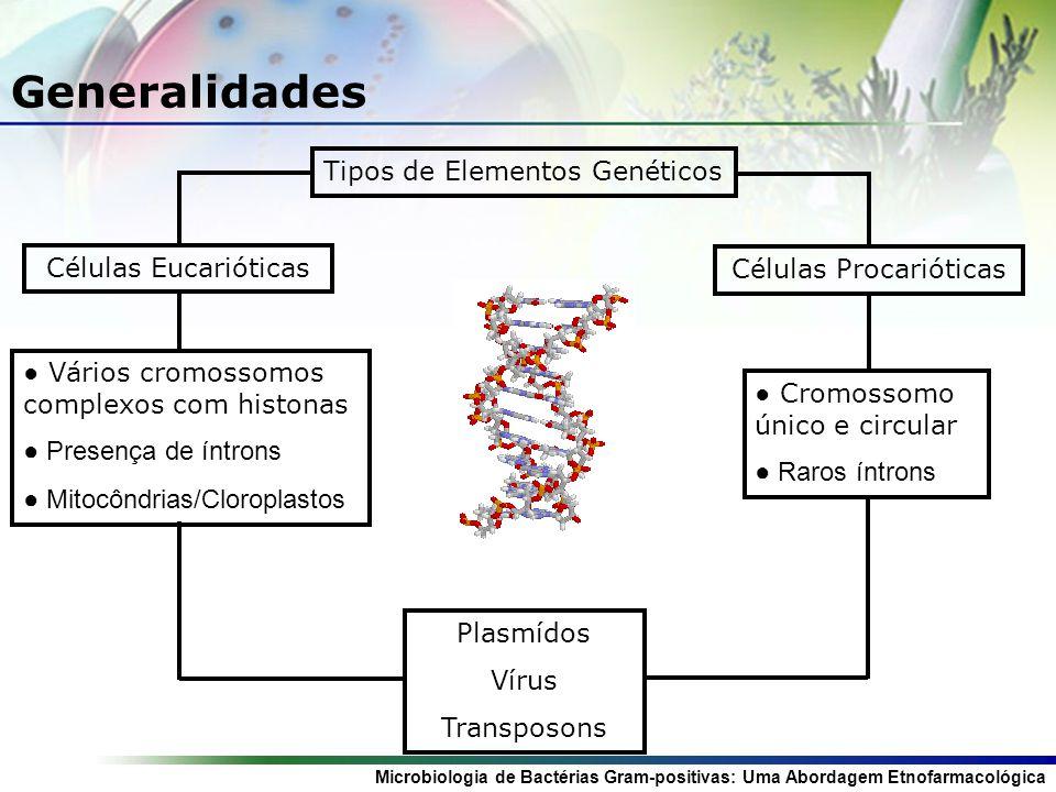 Generalidades Tipos de Elementos Genéticos Células Eucarióticas