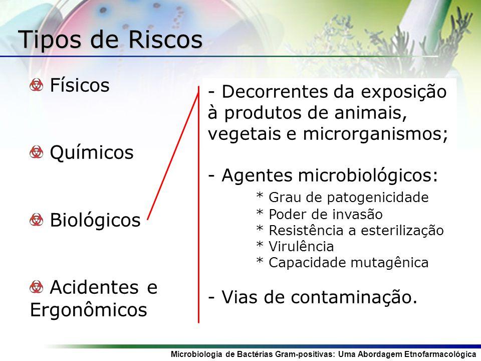 Tipos de Riscos Físicos Químicos Biológicos Acidentes e Ergonômicos