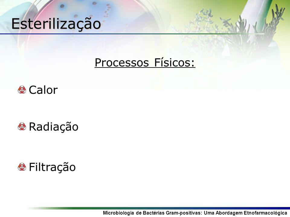 Esterilização Processos Físicos: Calor Radiação Filtração