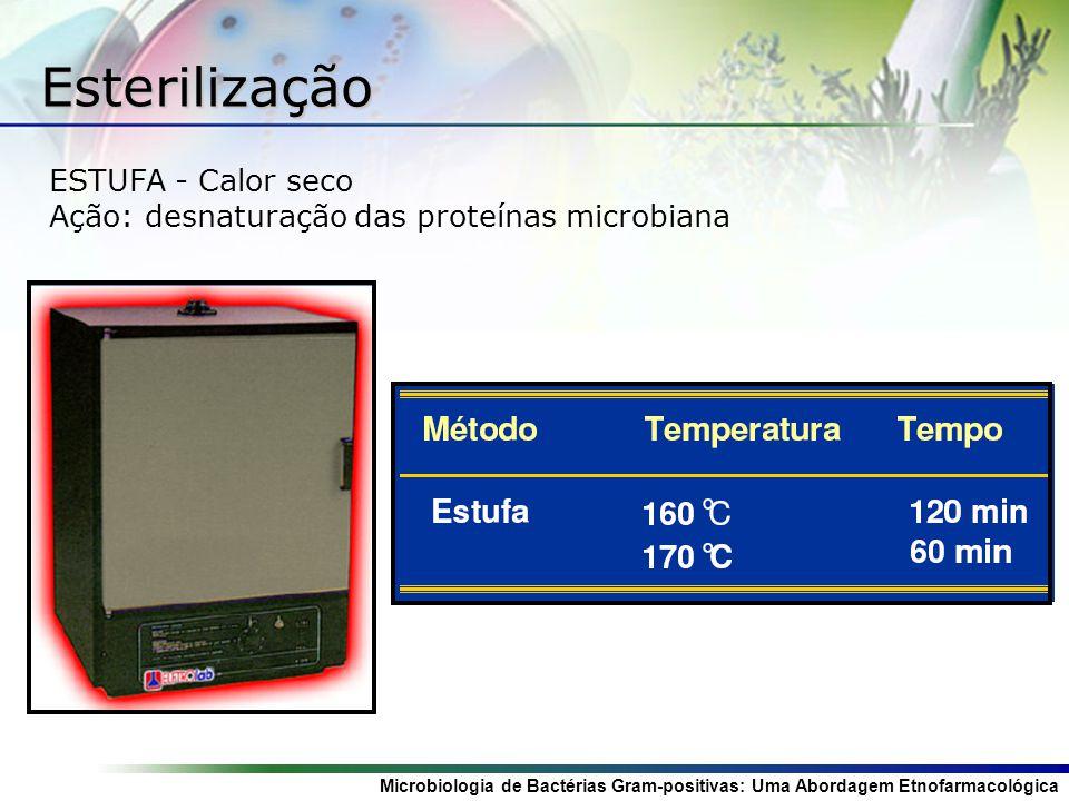 Esterilização ESTUFA - Calor seco
