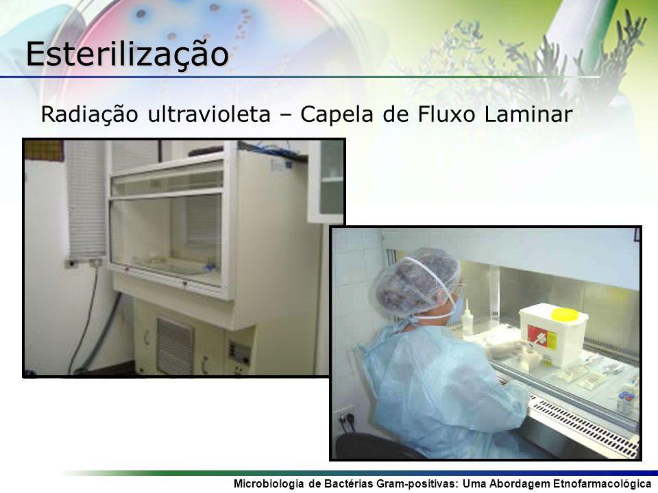 Esterilização Radiação ultravioleta – Capela de Fluxo Laminar