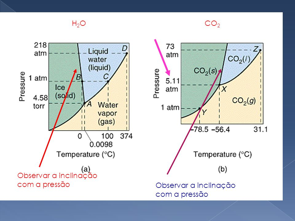 H2O CO2 Observar a inclinação com a pressão Observar a inclinação com a pressão