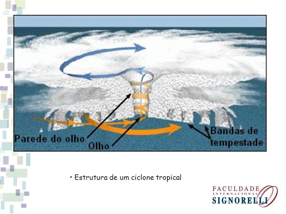 • Estrutura de um ciclone tropical