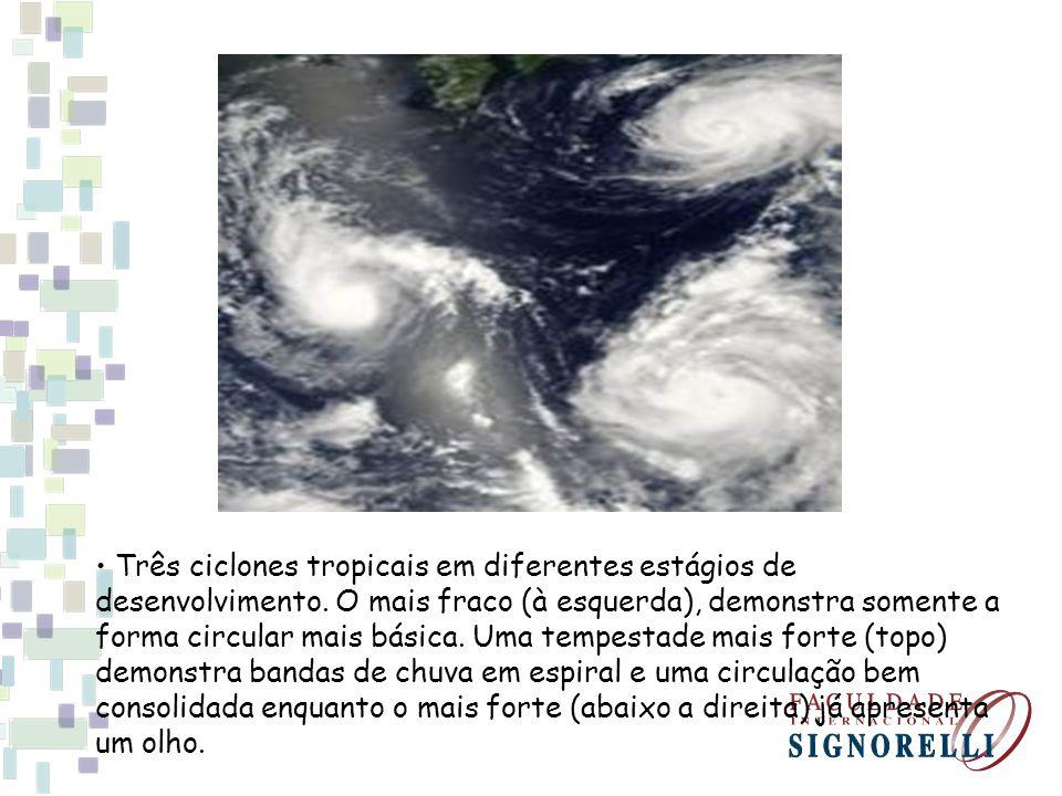 • Três ciclones tropicais em diferentes estágios de desenvolvimento
