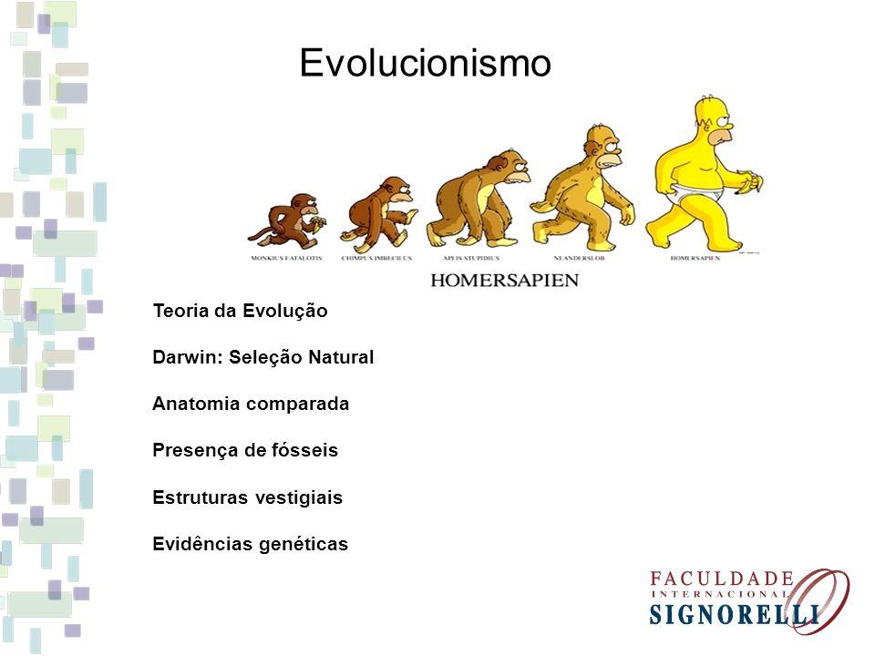 Evolucionismo Teoria da Evolução Darwin: Seleção Natural