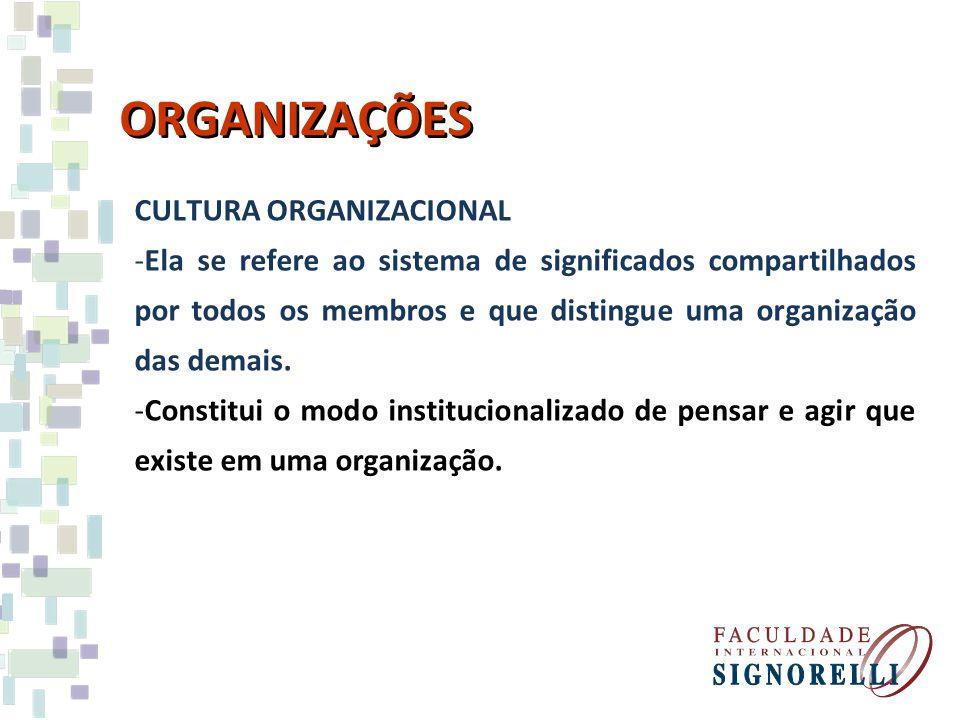 ORGANIZAÇÕES CULTURA ORGANIZACIONAL