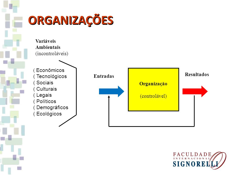 ORGANIZAÇÕES Variáveis Ambientais (incontroláveis) Econômicos