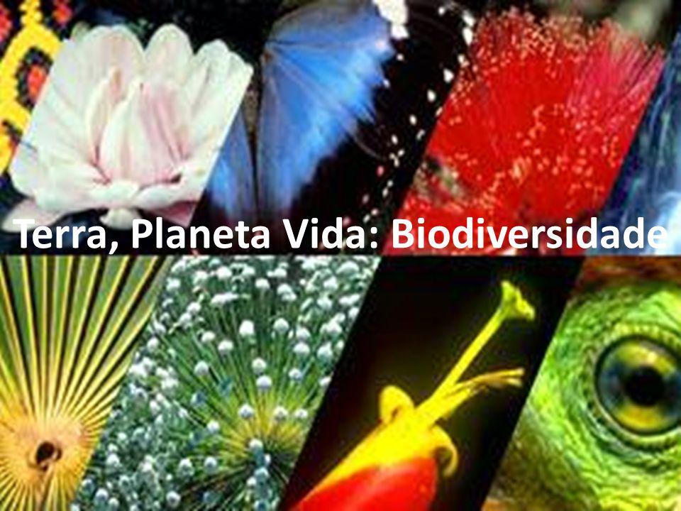 Terra, Planeta Vida: Biodiversidade