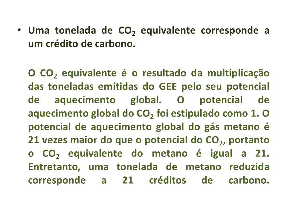 Uma tonelada de CO2 equivalente corresponde a um crédito de carbono.