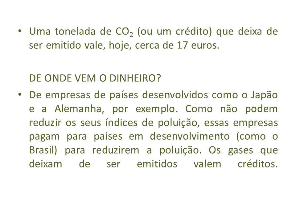 Uma tonelada de CO2 (ou um crédito) que deixa de ser emitido vale, hoje, cerca de 17 euros.
