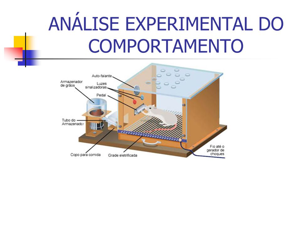 ANÁLISE EXPERIMENTAL DO COMPORTAMENTO